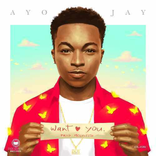 Ayo Jay - Want You - Song Art