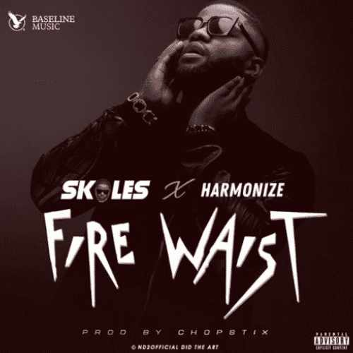 Skales - Fire Waist - Song Art