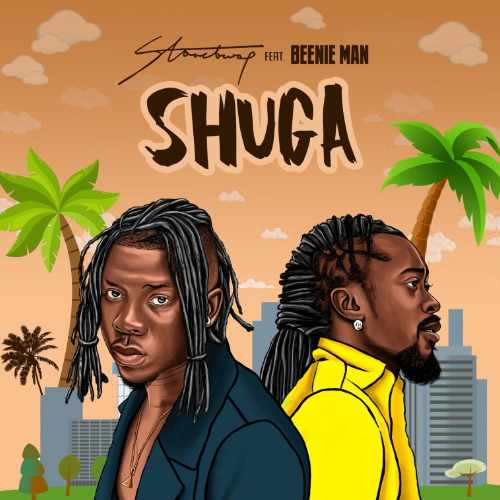 Stonebwoy - Shuga - Song Art